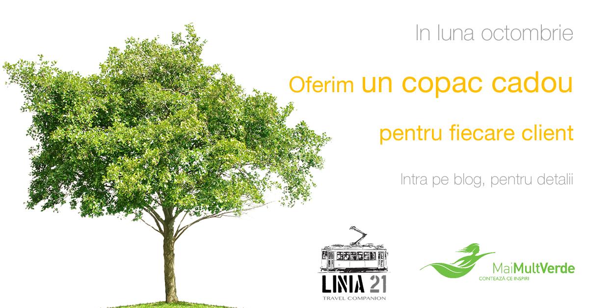 Linia21.ro oferă un copac cadou fiecărui client